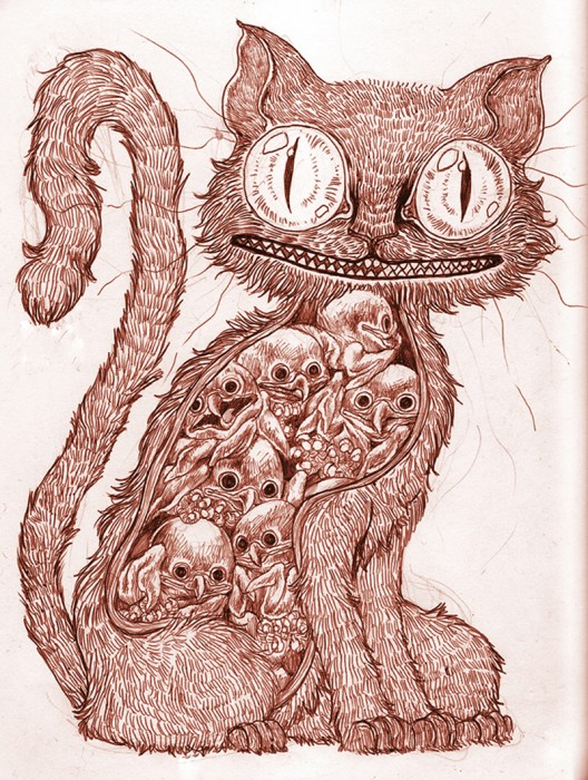 cat insides