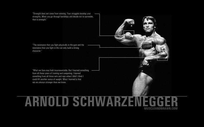 arnold schwartzenegger quotes