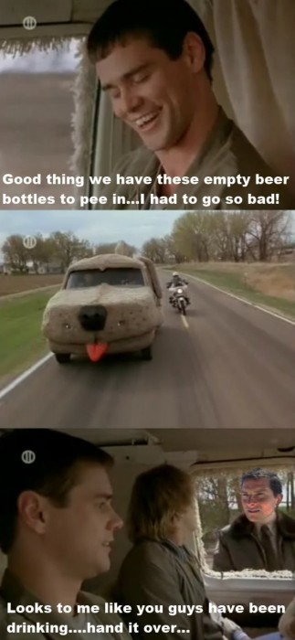 dumb and dumber pulled over