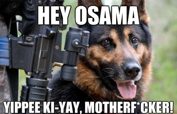 hey osama hey osama Politics Military Humor forum fodder Cute As Hell Animals