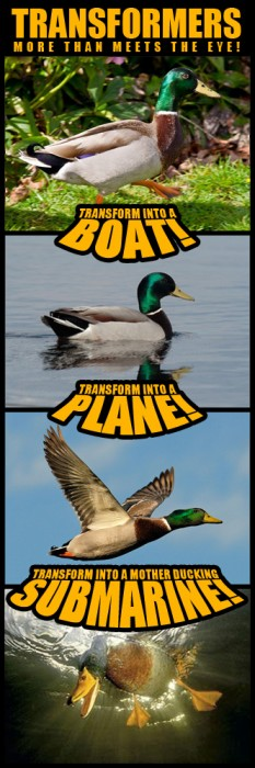 Duck - the ultimate transformer
