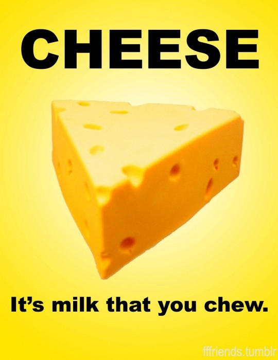 cheese - its milk that you chew