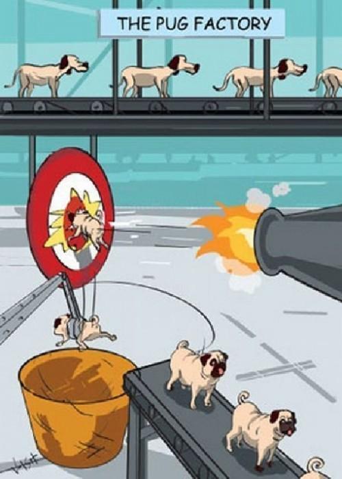 pug factory