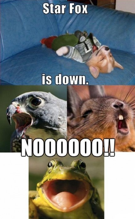 star fox is down 430x700 star fox is down