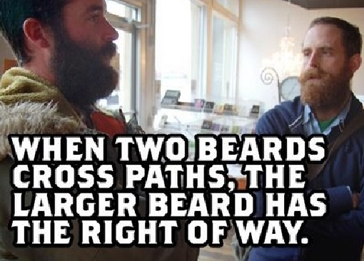 when two beards cross paths when two beards cross paths