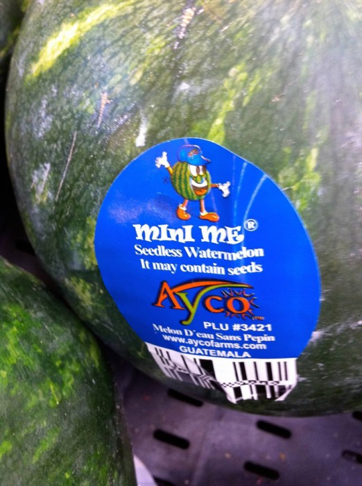 seedless watermelon may contain seeds