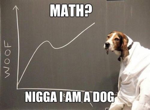 math - nigga I am a dog