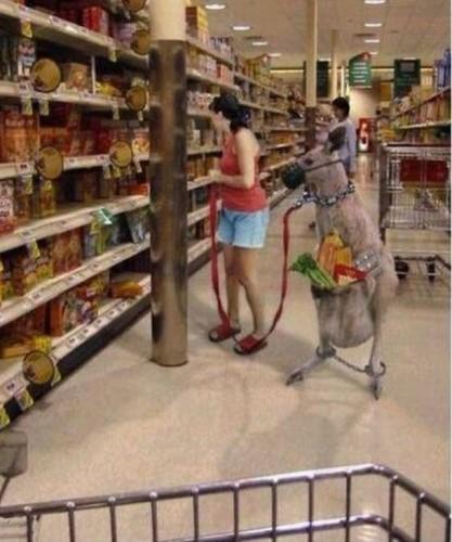 shopping in australia