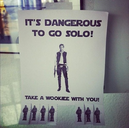 its dangerous to go solo - tak ea wookiee with you