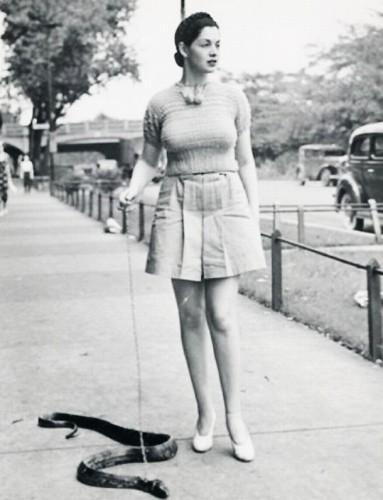 snake walker