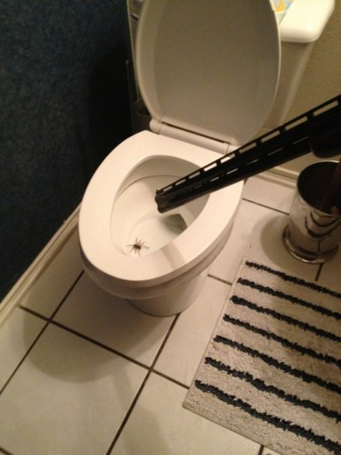 toilet spider solution 375x500 toilet spider solution wtf Weapons Nature