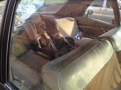 dead baby in back seat