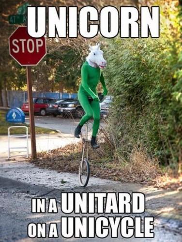 unicorn in a unitard on a unicycle 376x500 unicorn in a unitard on a unicycle wtf Humor