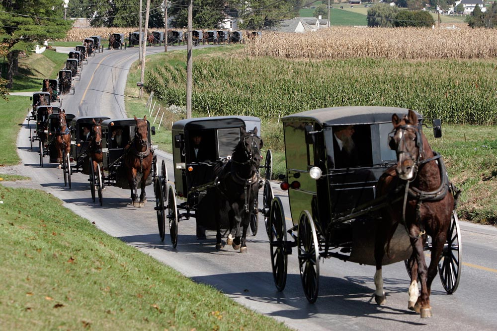 amish funeral.jpg