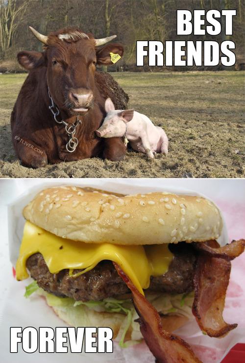 best friends forever.jpg