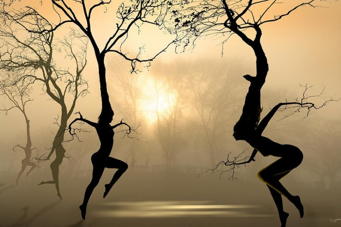 dancing nude trees.jpg