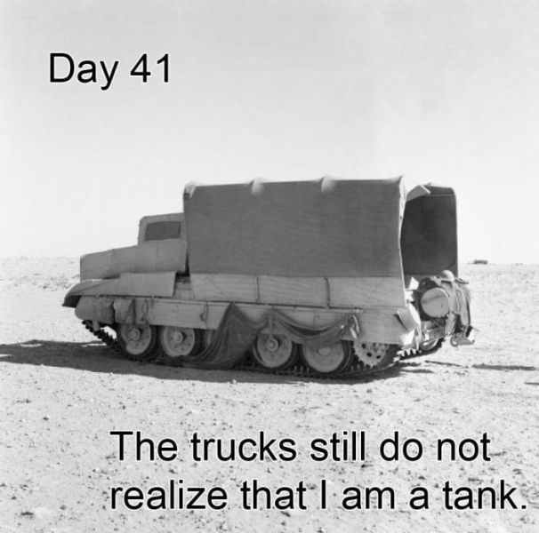 day 41 - the trucks still do not realize that i am a tank.jpg