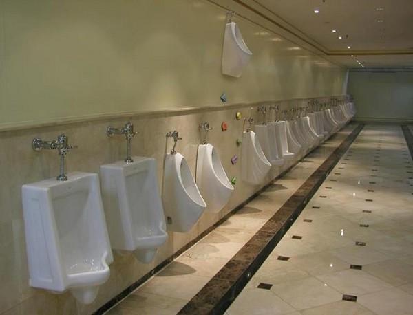 expert mode urinal.jpg