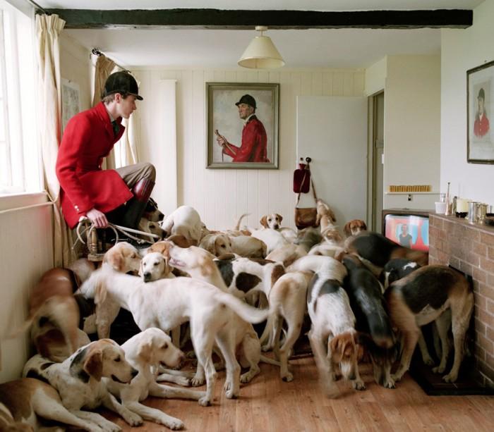 hound room.jpg