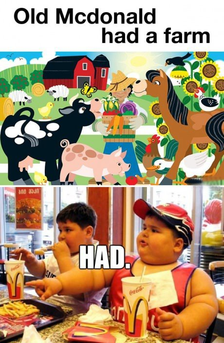 old mcdonald had a farm HAD old mcdonald had a farm   HAD Humor Food fat shaming
