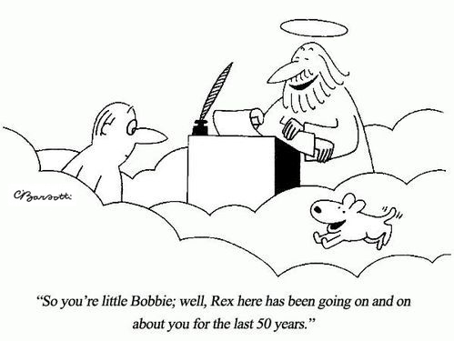 rex loves bobbie.jpg