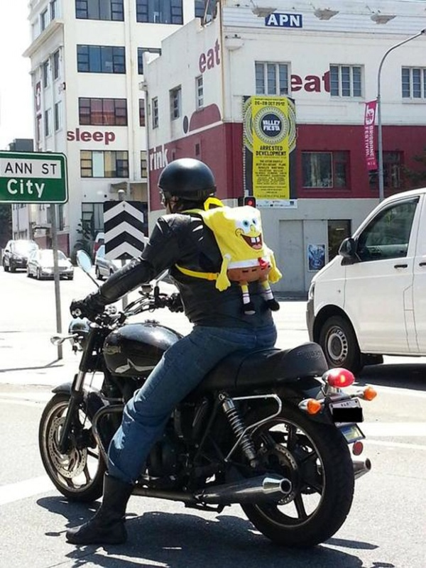 sponge bob biker.jpg