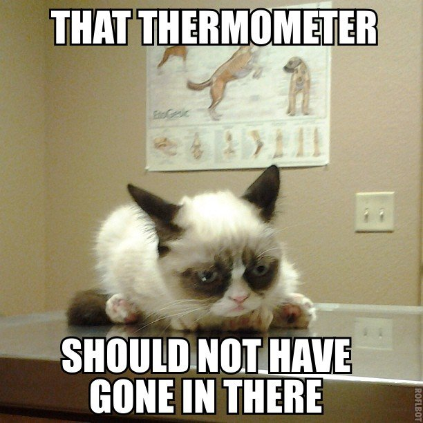 that thermometer should not have gone in there.jpg