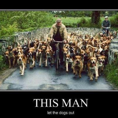 this man let the dogs out.jpg