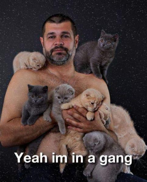 yeah Im in a gang.jpg
