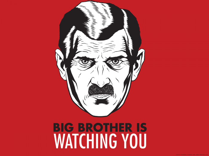 big brotther is watching you.png
