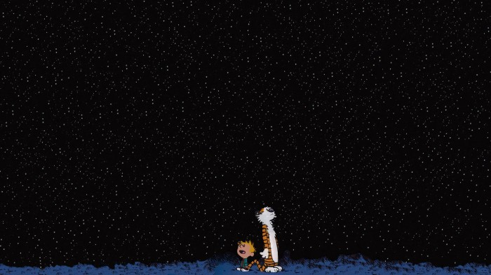 calvin and hobbes - night sky.jpg