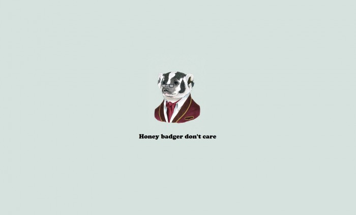 honey Badger don't care.jpg