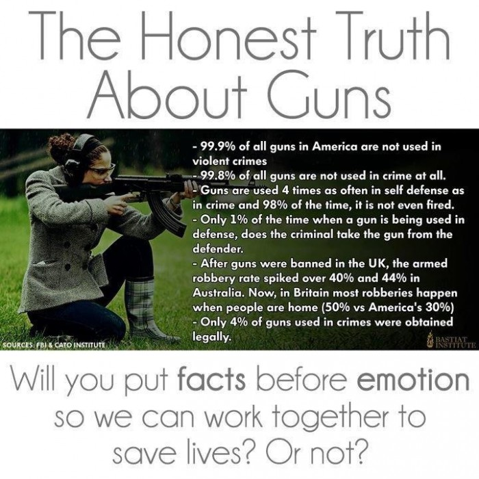 the honest truth about guns.jpg