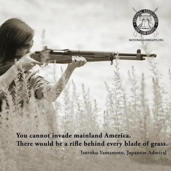 you cannot invade mainland america, there would be a rifle behind every blade of grass.jpg