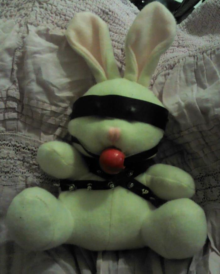 BDSM bunny.jpg