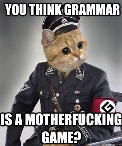 you think grammar is a motherfucking game.jpg