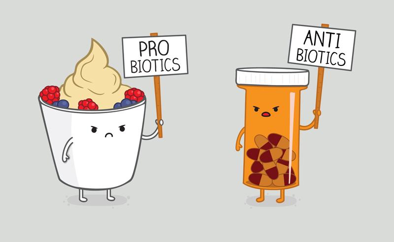 probiotics vs antibiotics.jpg