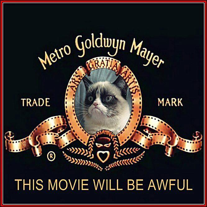 Grumpy Cat Movie.jpg