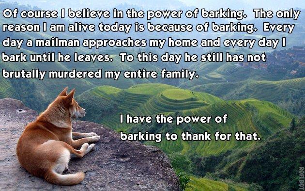 Power of Barking.jpg