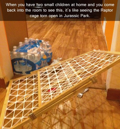 Raptor cage.jpg