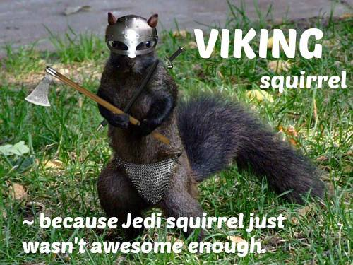 vikign squirrel.jpg