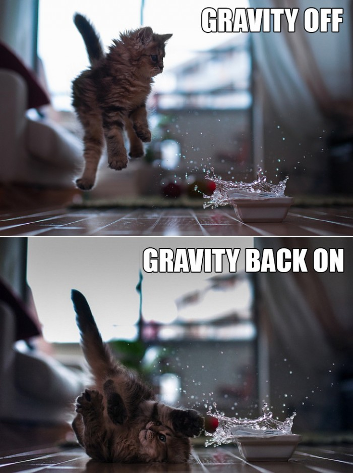 Gravity Off and On 700x937 Gravity Off and On Science! lolcats Humor