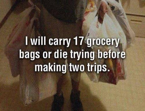 I will carry 17 grocery bags.jpg