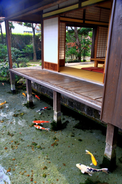 Koi Pond Deck.jpg