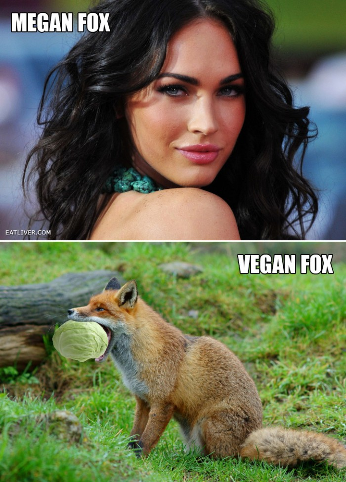 Megan Fox Vs vegan Fox.jpg