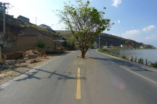 split road.jpg