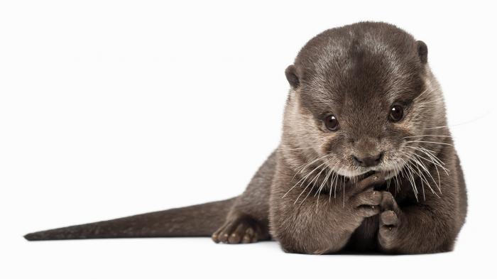 1378325634189