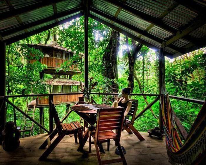 Awesome treehouse.jpg