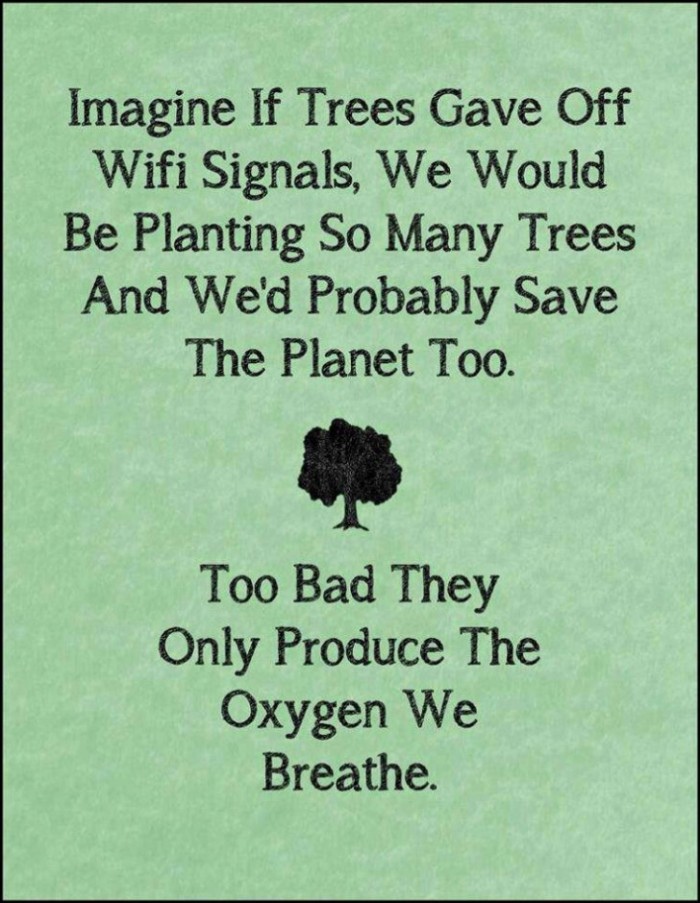 if trees gave off wifi signals.jpg