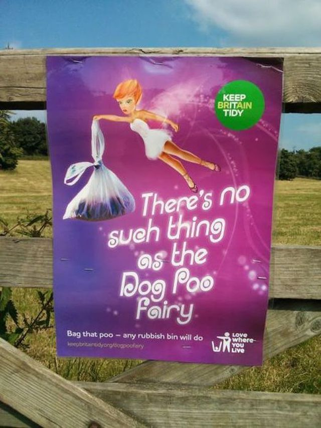 there's no such thing as the dog poo fairy.jpg